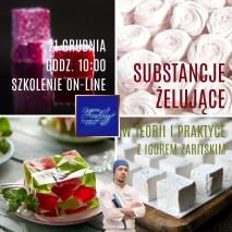 26.11 Substancje ŻELUJACE w teorii i praktyce Szkolenia cukiernicze on-line _ Igor Zaritskiy