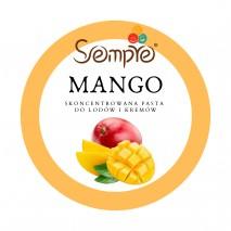 1kg MANGO skoncentrowana pasta mango do lodów i kremów Pernigotti