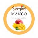 250g MANGO skoncentrowana pasta do lodów i kremów Pernigotti